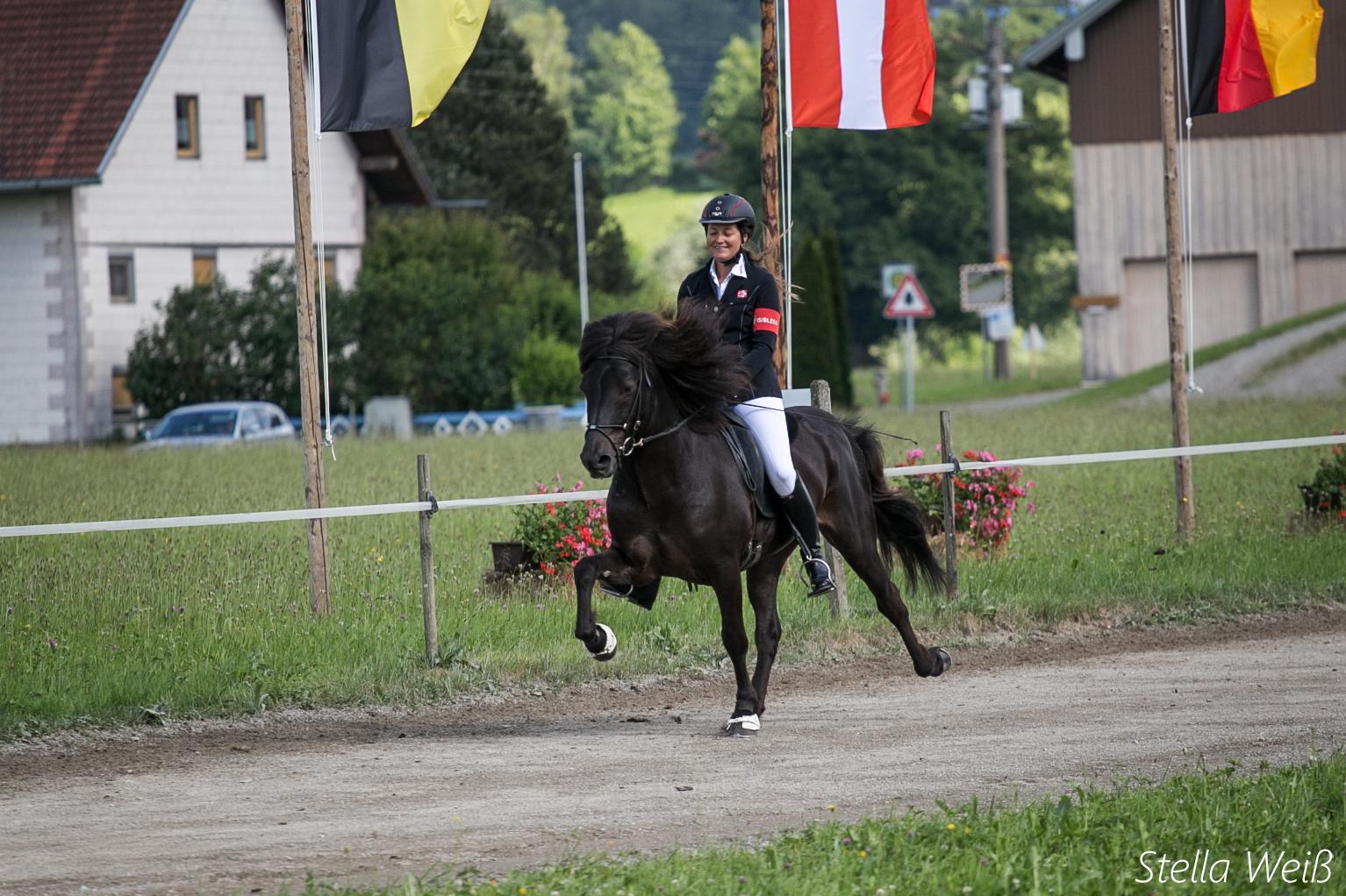 Alpenhof16.sw