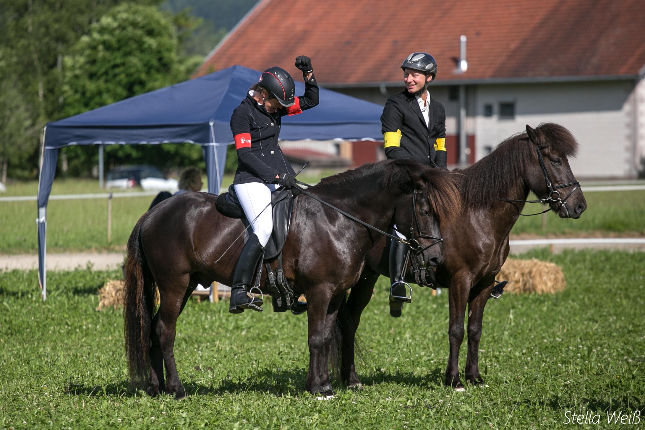 Alpenhof9.sw