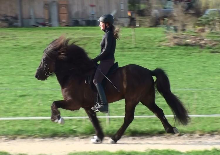 Training April 2013