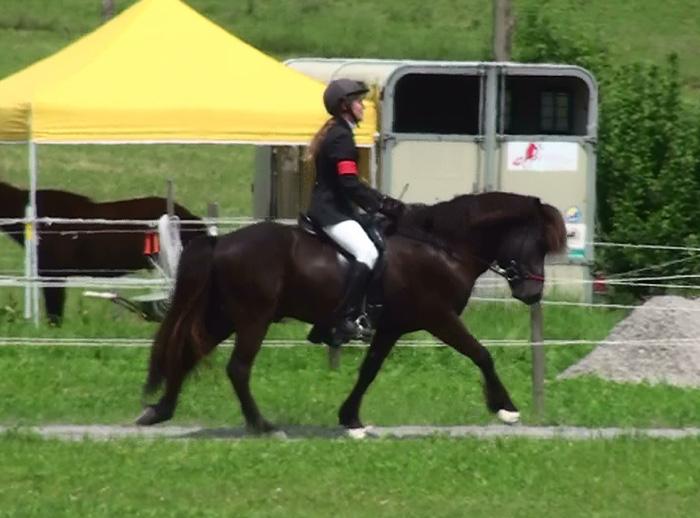Silvia mit Heljar frá Stóra-Hofi beim Turnier in der Schweiz, 2010. Bewertungen von bis zu 9,0 für Schritt beim ersten Turnierstart!
