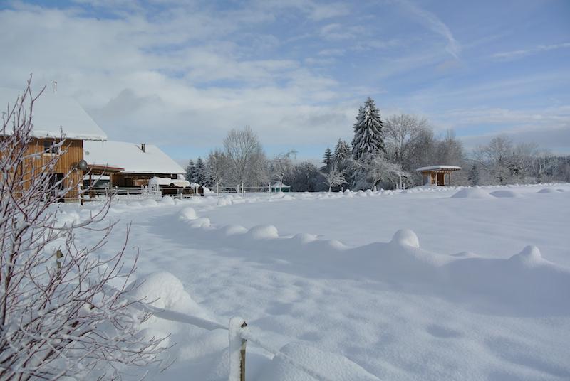 Winter Ovalbahn