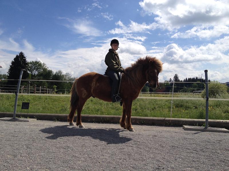 Stolze Pferdebesitzerin