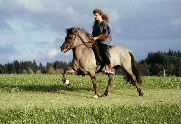 Eik frá Hoftúnum mit Silvia 1994