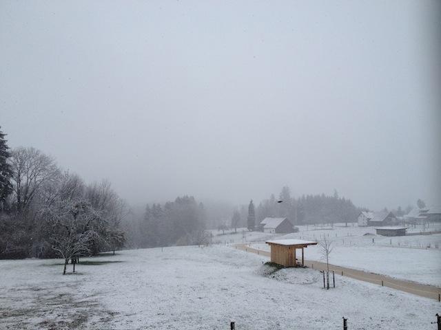 Schnee am 23. März