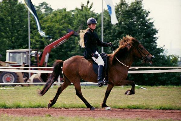 Silvia mit Lipurta frá Laugardaelum auf der DIM 1999
