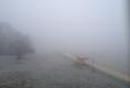 Nebel Anfang März